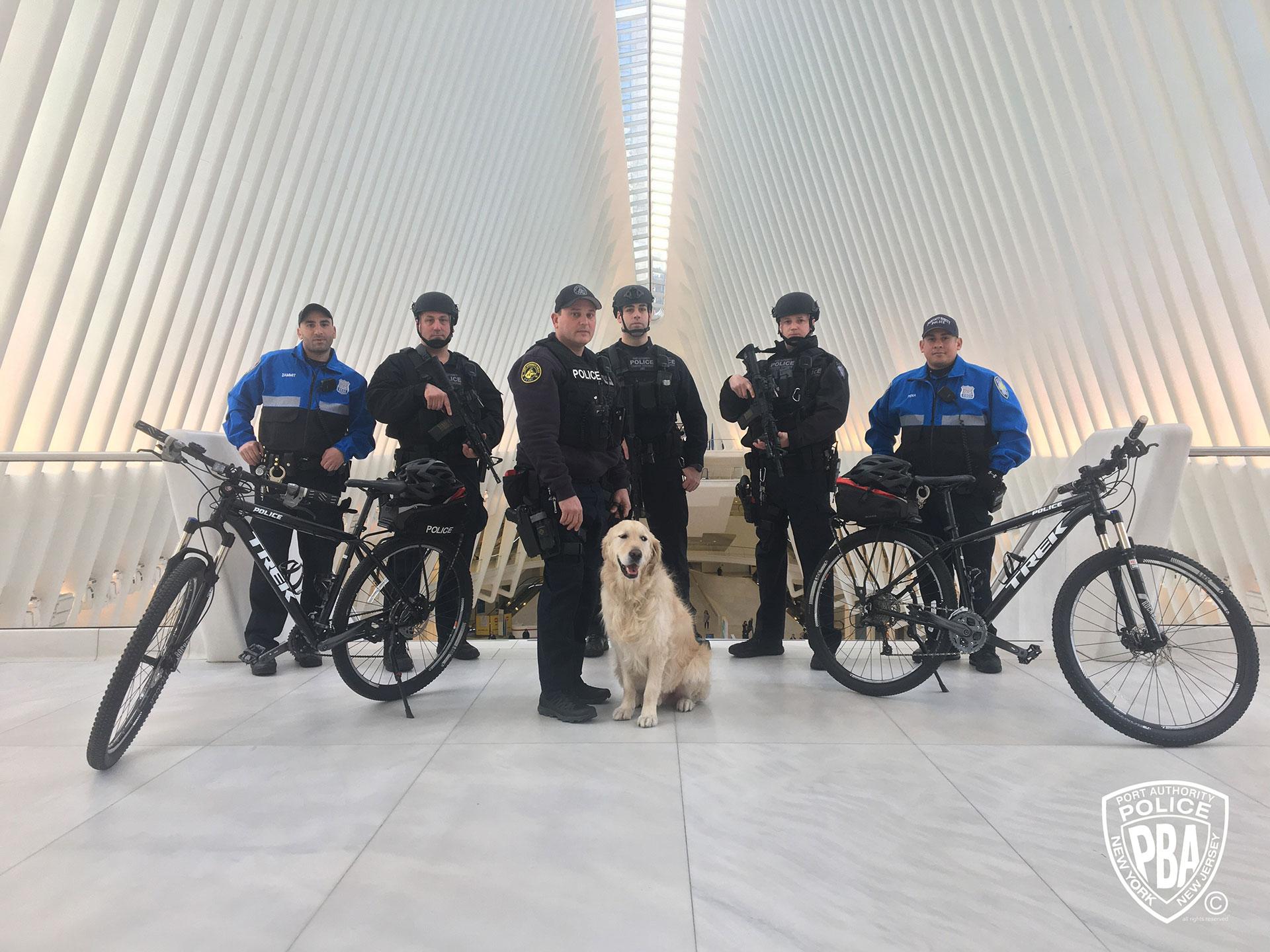 WTC01
